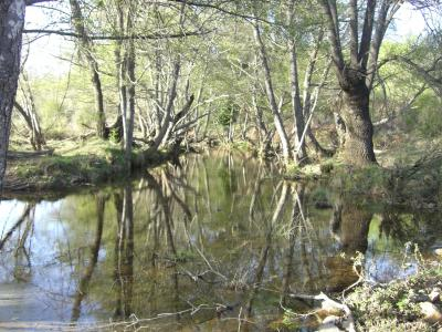 The Duero River Basin Authority has entrusted OFITECO with the project drafting for the correction of the hydromorphological alterations in the water masses in the provinces of León, Salamanca, Ávila, Zamora and Orense.